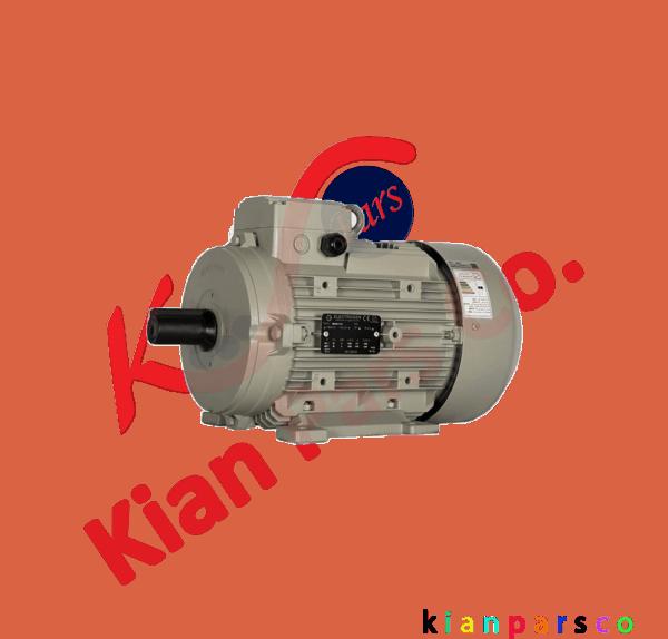الکترو موتور الکتروژن